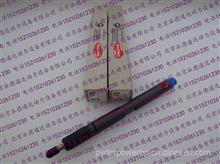 德尔福LJBB04101A喷油器/杰西博JCB挖机喷油器LJBB04101A/LJBB04101A