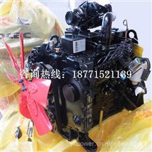 东风康明斯 4BT3.9-C100 柴油发动机总成//东康 B3.9系列发动机