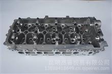 云内动力 配件 缸盖部件/X300603