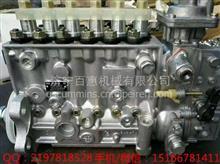 徐工XS262单钢轮压路机燃油泵3938381博世原厂BOSCH缸体/六缸美国康明斯6C8.3