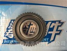 潍柴WD615机油泵中间齿轮/614070061