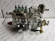 云内动力正品配件YN33PE喷油泵总成HA110028 B4PM220Q/HA110030