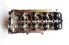 云内动力发动机 4102 .4100. YNF40. YN33D系列/缸盖总成X250622