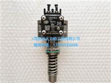 南岳衡阳电控单体泵 原装正品 厂家一级代理/NDB008