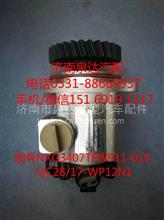 徐工重卡转向油泵、助力泵QC28/17-WPN/QC28/17-WP12N1