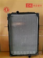 东风天龙水箱1301010-K2200 东风原厂配件/1301010-K2200