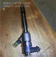 厂家直销原厂各种型号大柴498油嘴油泵/498