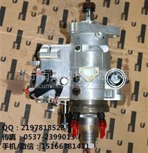 康明斯3917519燃油泵-DD110压路机燃油泵 发动机总成现货促销/4BTA3.9燃油泵B3.9-C 3917519