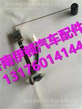 福田瑞沃RC1油箱浮子FB202376X0001
