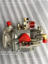 常德煤矿设备540A矿用车NTA855发动机燃油泵3261946PT燃油泵/3261946