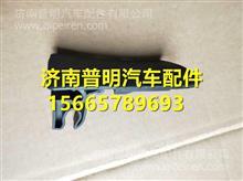 SHACMAN陕汽德龙F3000车门内扣手/81.62641.0099