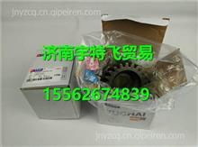 玉柴YC6C水泵传动齿轮C3000-1307611A/C3000-1307611A