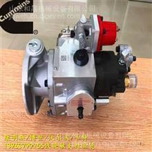 安徽荻港重康NTA855-G4燃油泵3059657 船机燃油泵 正品/4999470G康明斯经销商