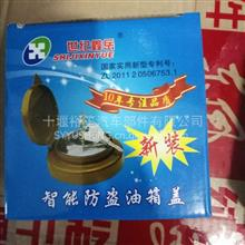东风系列旗舰天龙天锦油箱盖防盗锁总成  大量批发价格低廉/18272316508