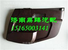 WG1684337022重汽新斯太尔D7B右车门护板总成/WG1684337022