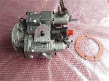 康明斯柴油发动机K19燃油泵3655654/3347530/3899014