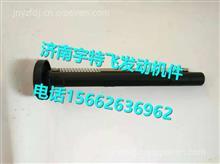 一汽解放J6锡柴点火线胶套带弹簧3603006-65A-0000/3603006-65A-0000