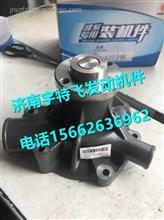 潍柴WP6水泵13072498