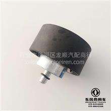 东风公司一中电气原厂天龙天锦大力神康明斯ISDE电控发动机惰轮/5260382