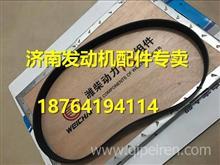 潍柴发动机配件皮带多楔带612600061831/612600061831