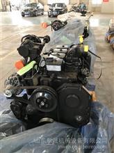 山东主机装配康明斯4B3.9发动机总成库存进口发动机特价销售/B43.9发动机总成