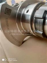 云内动力发动机正品配件X10009144曲轴合件(D25TCID-030014)/X10009144曲轴D25TCID-030014