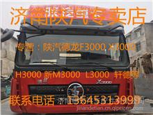 陕汽德龙F2000前拖钩/DZ93189930001