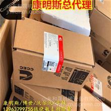 重庆康明斯喷油器KTA38喷油器总成3052255 正品批发站/3052255-20