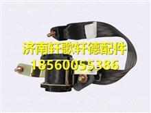 P24905810010陕汽轩德X6安全带总成-司机座椅/P24905810010