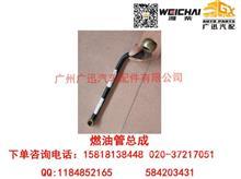 潍柴动力WP12燃油管总成/612630080014