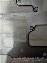 柴油发动机康明斯QSX 齿轮室垫片4393089 产地:中国/4393089
