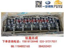 一汽解放锡柴6DM2缸盖总成/1003011-81D