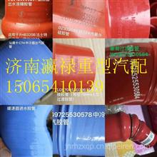 1005109947陕汽F2000F3000X3000M3000配件国六中冷器胶管水管油管/1005109947