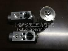 东风天龙天锦正品空调膨胀阀大孔/816010-C0100