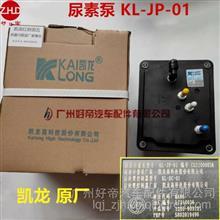 好帝凯龙尿素泵总成KL-JP-01上汽红岩国5杰狮气驱方口1205-903121/KL-JP-01