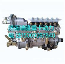 BB5T1-1111100-493 玉柴BB5T1发动机燃油泵总成/BB5T1-1111100-493
