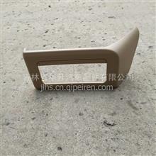 重汽豪瀚仪表台杂物盒面罩/WG1664160579