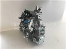 东风康明斯4BTA3.9-C100发动机高压喷射泵