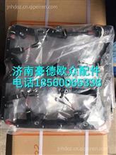611600080105潍柴WP10H发动机喷油器线束/611600080105