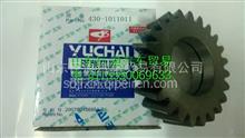 430-1011011 玉柴6108机油泵中间传动齿轮/430-1011011