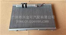 天龙冷凝器芯/81Z45-020