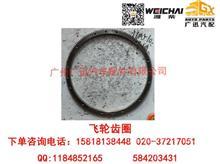 潍柴动力WP7/WD165飞轮齿圈/81500020009