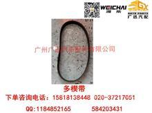 潍柴动力WP10多楔带/612600061274