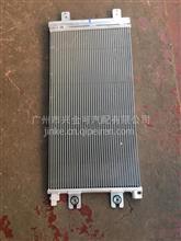 天龙冷凝器总成/8105010-C3100