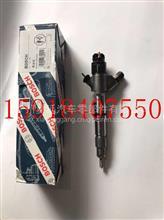 潍柴动力WP10喷油器总成/0445120224