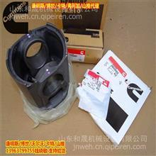 中国的镍都/甘肃金川康明斯QSK45活塞组件4309253质保/纯进口3645958
