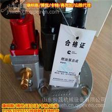 3090942燃油泵3085405燃油泵3069221分带座和不带座/康明斯经销商