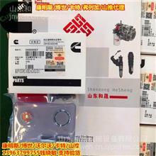 福田康明斯ISG油嘴专用维修件5404060EF油嘴 喷油器总成/4307475
