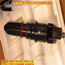 江苏康明斯V28喷油器总成3058849喷油嘴3058849PX直销/康明斯喷油器供应商