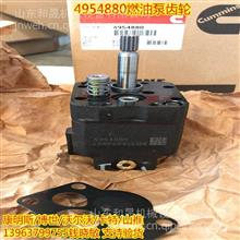 4088866燃油泵C5476587齿轮泵修包康明斯原装正品/3973228康明斯代理